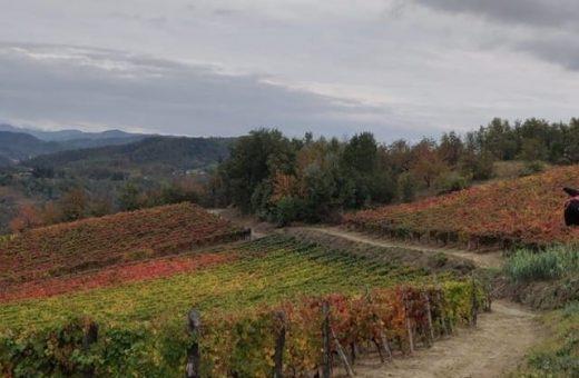 Immagine Piemonte Unesco